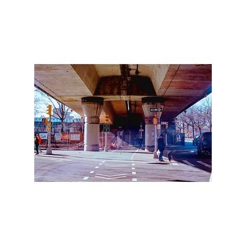 화려한 하와이안 블랙옐로우- 여성 꽃가방 백팩